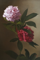 Peonies 'A Vento--SOLD