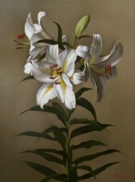 White Lilies--SOLD